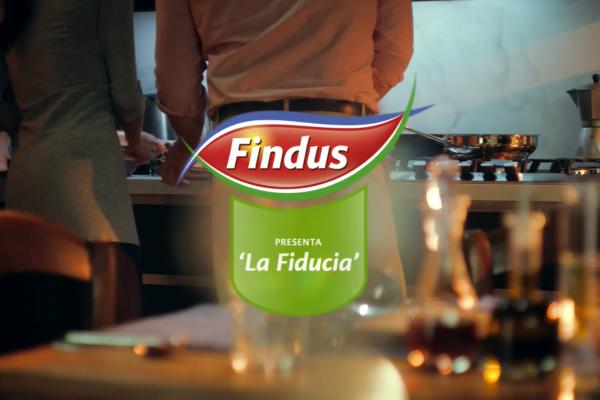 Findus aprile 2014