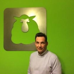 Francesco_Errico-pecora-verde