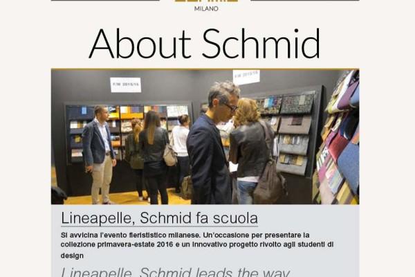 Newsletter-Schmid