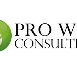 pro-web-consulting