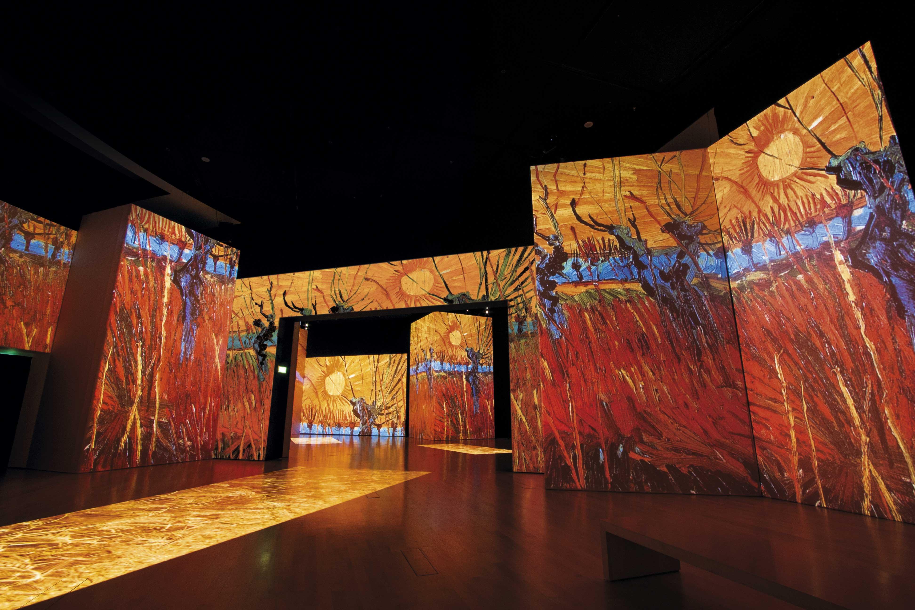 Va A Ninetynine La Gestione Del Tour Italiano Di Van Gogh