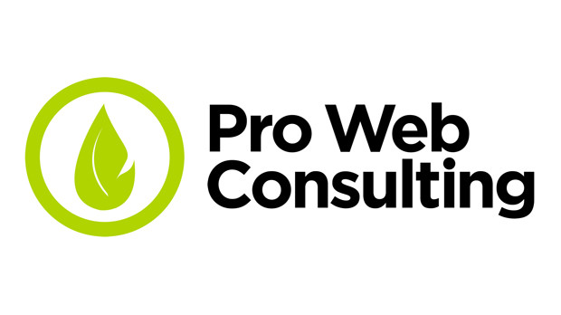 pro-web-consulting-logo-2016