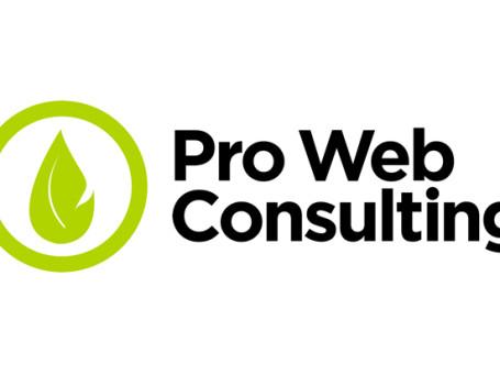 Proweb-Consulting-DA-USARE