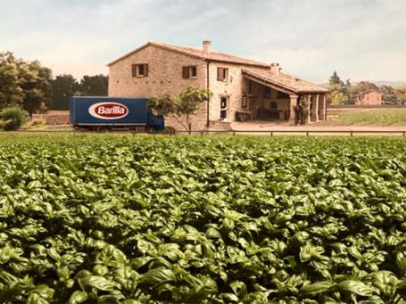 Pesto-frame-3.jpg
