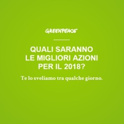 greenpeace-natale