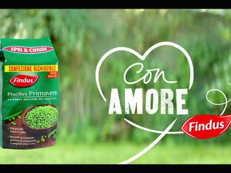Findus-Pisellini-Primavera-grey