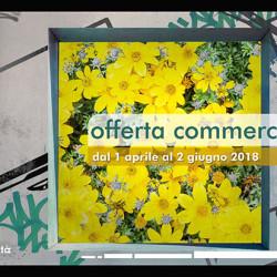 Rai-Pubblicita-Offerta-Primavera