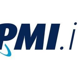 pmi-it