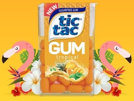 tic-tac-gum-tropical