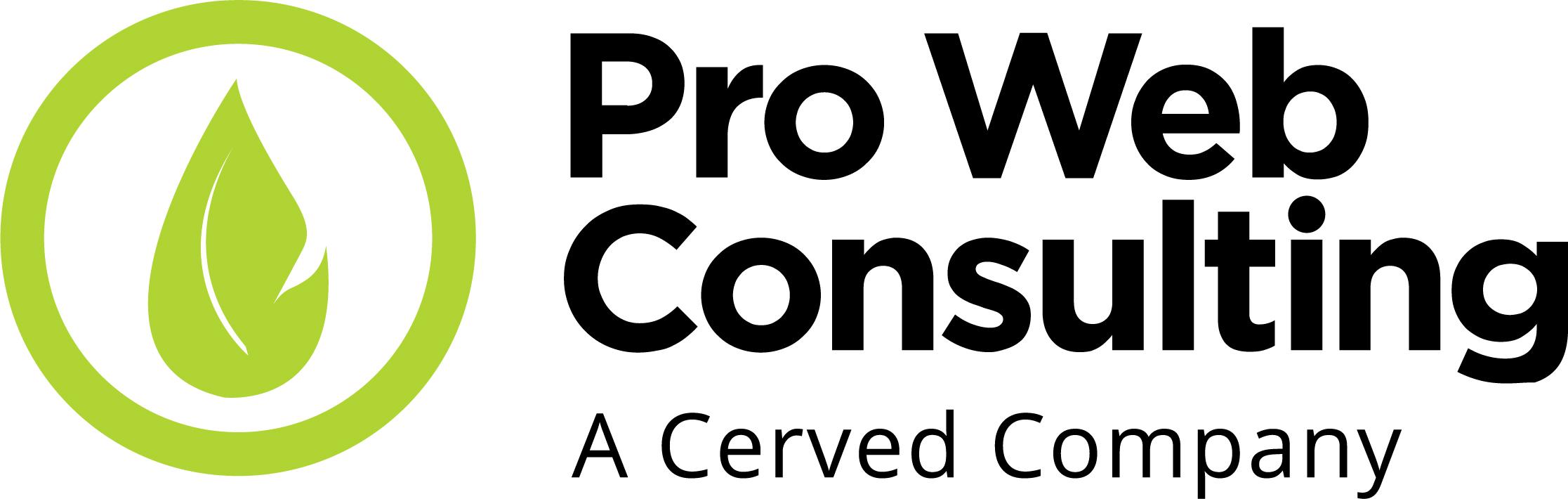 pro web consulting-nuovo logo