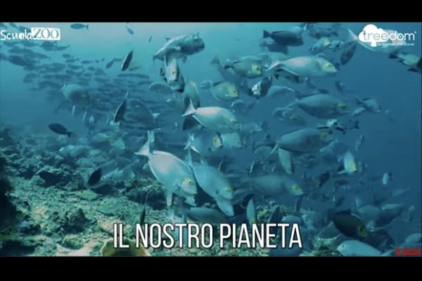 ScuolaZoo-Campagna-ambiente-1