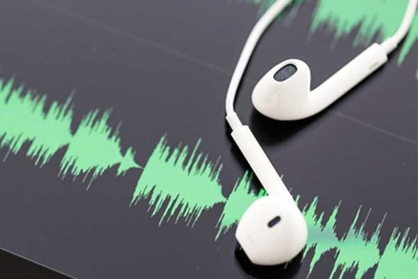 podcast-voxnest
